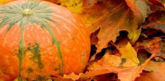 Halloween Soesterberg geslaagd