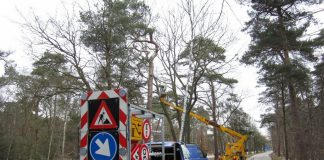 Start onderhoud bomen buitengebied